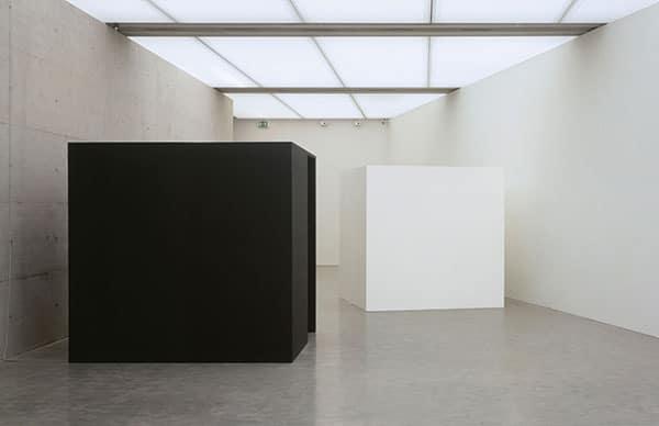 Adrian Piper: Black Box/White Box, 1992